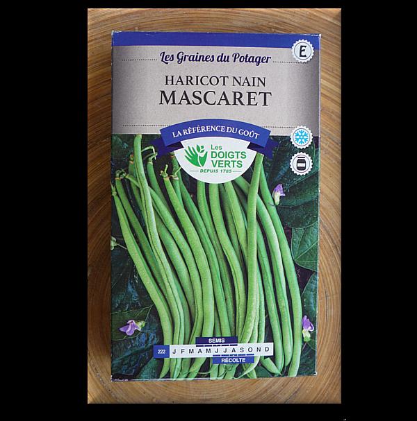 Semer haricot maladies et ravageurs des haricots lgumes et potager tuteurer les haricots rame - Quand semer les haricots ...